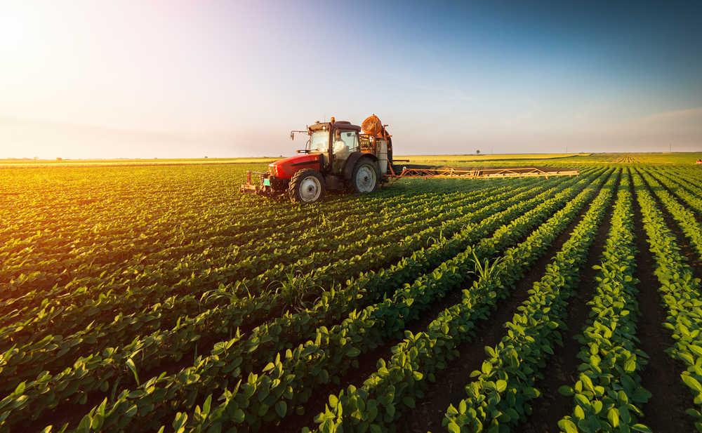 El negocio de la agricultura en el siglo XXI